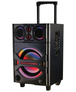 "MAXPOWER Professional DJ Speaker System Single 10"" Woofer with Bluetooth"